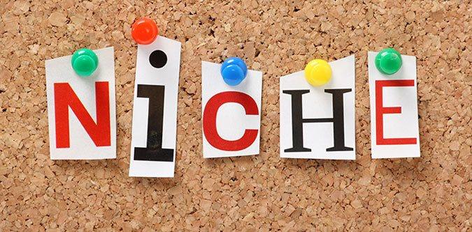 Micro-Niche