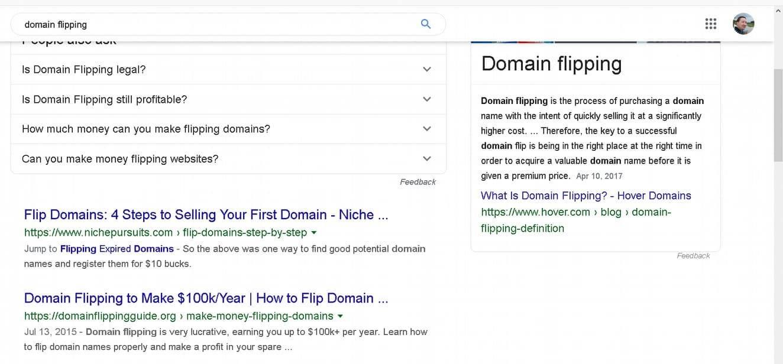 domain flipping serp